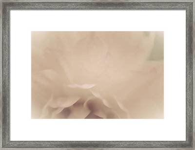 So Soft Framed Print