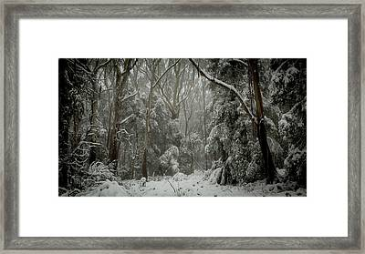 So White Framed Print by Michael James