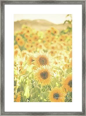 Soak Up The Sun Framed Print