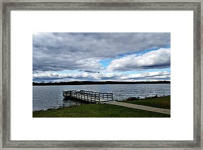 Soar Framed Print by 2141 Photography