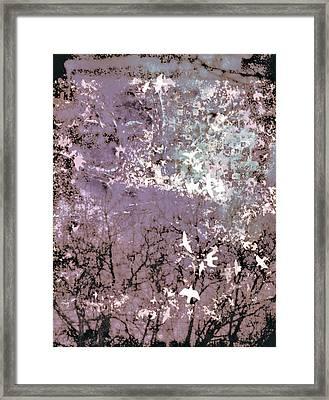Soar Framed Print