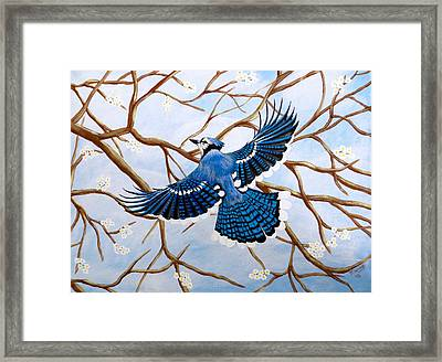 Framed Print featuring the painting Soaring Blue Jay  by Teresa Wing