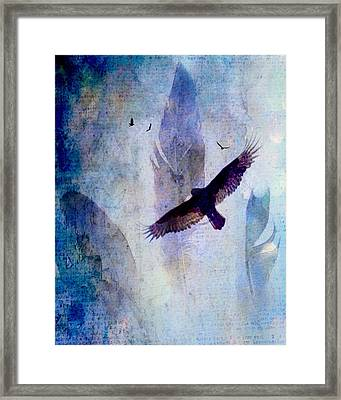 Soaring Framed Print by Lisa Noneman