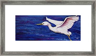 Soaring Over Egret Bay Framed Print
