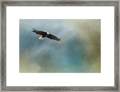 Framed Print featuring the photograph Soaring by Rebecca Cozart