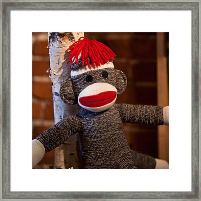 Sock Monkey Framed Print by Edward Myers