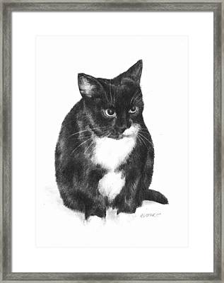 Socks Framed Print