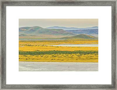 Framed Print featuring the photograph Soda Lake To Caliente Range by Marc Crumpler