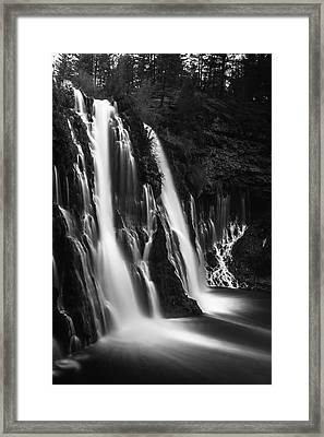 Soft And Smooth Framed Print