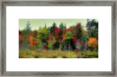 Framed Print featuring the photograph Soft Autumn Panorama by David Patterson