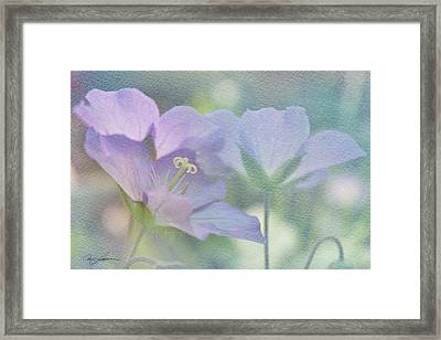 Framed Print featuring the photograph Soft Blue by Ann Lauwers