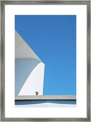 Soft Blue Framed Print