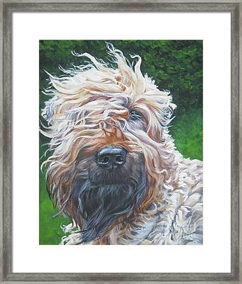 Soft Coated Wheaten Terrier Framed Print by Lee Ann Shepard