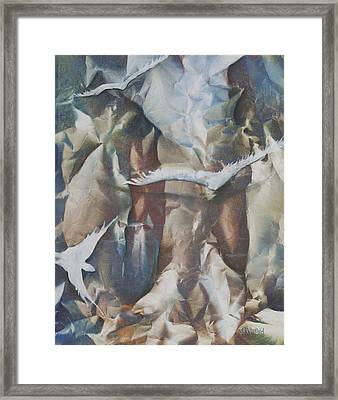 Soft Flight Framed Print