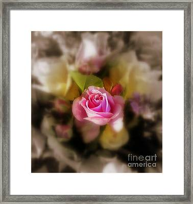 Soft Focus Framed Print by Sian Lindemann
