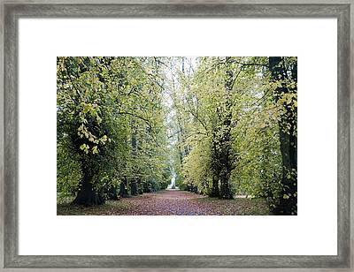 Soft Green Walkway Framed Print by Niel Morley
