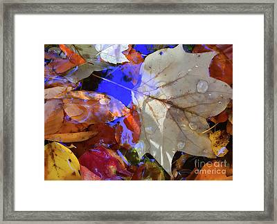 Soft Light Leaves Framed Print