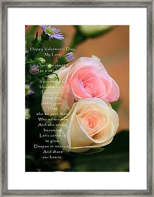 Soft Pastel Roses Framed Print