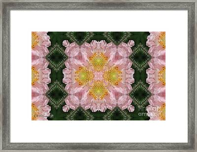 Soft Pink And White Angel's Choir Abstract Framed Print