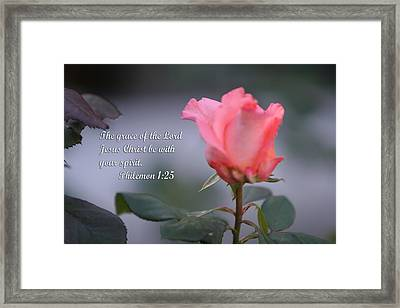 Soft Pink Rose With Scripture Framed Print by Linda Phelps