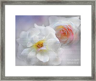 Soft Roses Framed Print