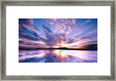 Soft Setting Framed Print