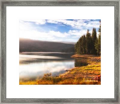 Soft Sunrise Framed Print by Anthony Bonafede
