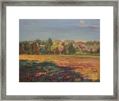 Soft Trees And Wildflowers Framed Print by Maris Salmins