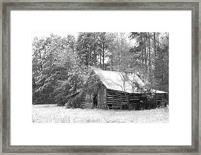 Soft Whisper Of Winter Framed Print by Benanne Stiens