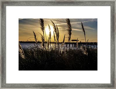 Framed Print featuring the photograph Soft Wind by Eric Christopher Jackson