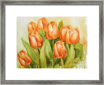Soft Yellow Spring Tulips Framed Print