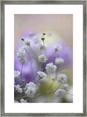Softly 1. Dreamy World Framed Print by Jenny Rainbow