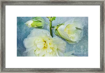 Framed Print featuring the photograph Softly by Betty LaRue