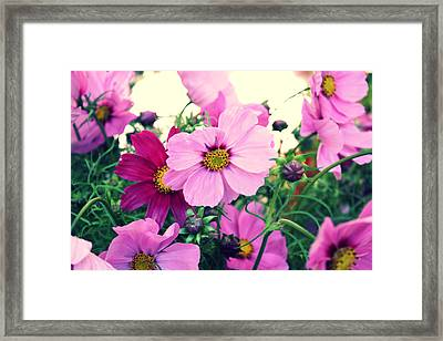 Softly Blowing Framed Print by Cathie Tyler