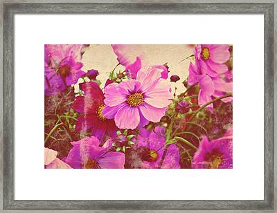 Softly Blowing Two Framed Print by Cathie Tyler