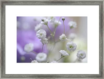 Softly. Dreamy World Framed Print by Jenny Rainbow