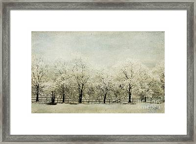 Softly Falling Snow Framed Print by Chris Armytage