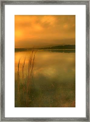 Softly Framed Print by Nina Fosdick