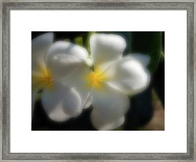 Softly Softly Framed Print by James Brooker