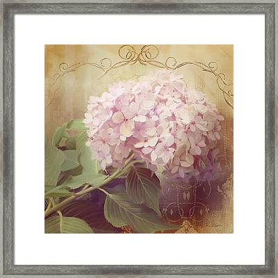 Softly Summer - Hydrangea 2 Framed Print by Audrey Jeanne Roberts
