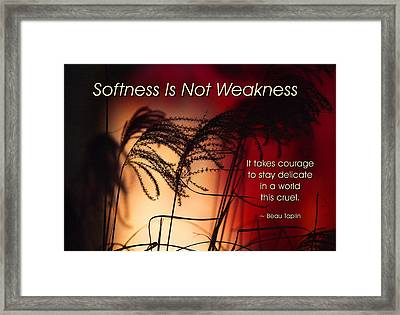 Softness Is Not Weakness Framed Print by Mike Flynn