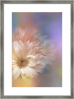 Softness Receding Framed Print