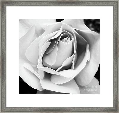 Softness Unfolding Framed Print
