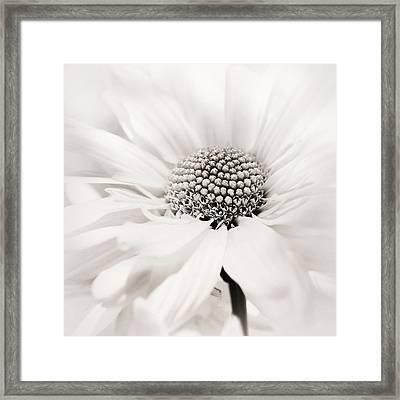 Framed Print featuring the photograph Soiree In Black N White by Darlene Kwiatkowski