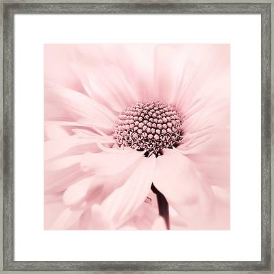 Framed Print featuring the photograph Soiree In Cotton Candy Pink by Darlene Kwiatkowski