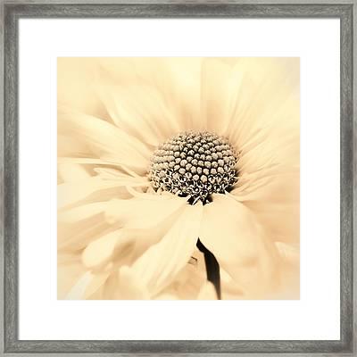 Framed Print featuring the photograph Soiree In Creamy Yellow by Darlene Kwiatkowski