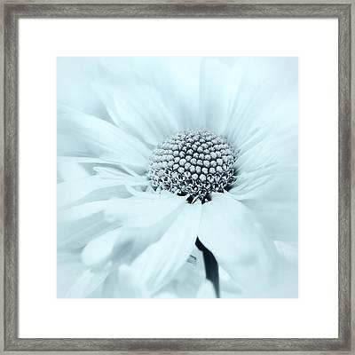 Framed Print featuring the photograph Soiree In Powder Blue by Darlene Kwiatkowski