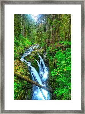 Sol Duc Falls Framed Print