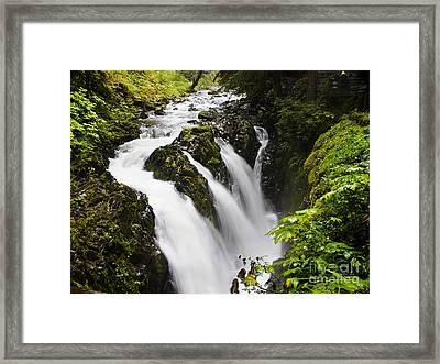 Sol Duc  Falls Washington Usa Framed Print