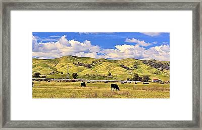 Solano County Pastoral  Framed Print by Josephine Buschman
